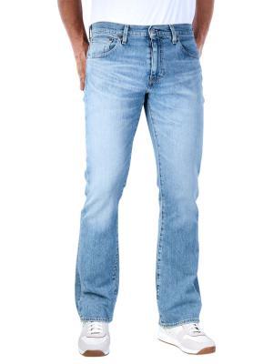 Levi's 527 Slim Bootcut Jeans fennel subtle