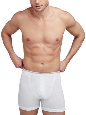 Jockey 2-Pack Modern Classic Boxer Trunk white