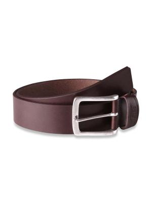 Frank juchte 40mm by BASIC BELTS