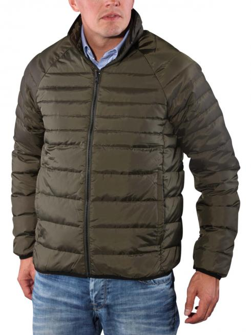 Timberland Bear Head Jacket forest night